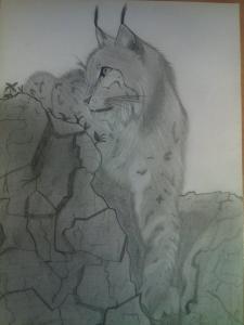 jobb agyféltekés rajz Vincze Zsuzsa 13