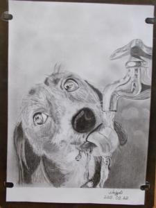 Nagy Tiborné Marianna rajztanfolyam utáni rajzai 2 (4)